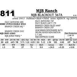 Lot 811 - MJB BLACKOUT 367A - MJB Ranch
