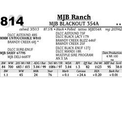 Lot 814 - MJB BLACKOUT 354A - MJB Ranch