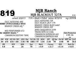 Lot 819 - MJB BLACKOUT 327A - MJB Ranch