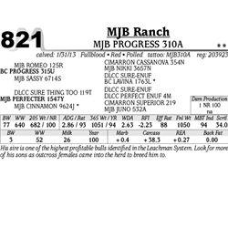 Lot 821 - MJB PROGRESS 310A - MJB Ranch