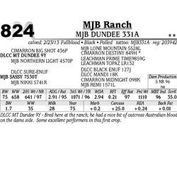 Lot 824 - MJB DUNDEE 331A - MJB Ranch