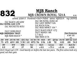 Lot 832 - MJB CROWN ROYAL 321A - MJB Ranch