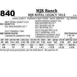 Lot 840 - MJB ROYAL LEGACY 341A - MJB Ranch