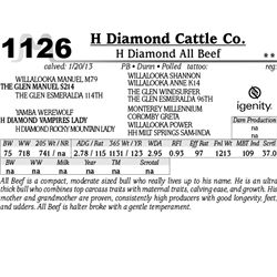 Lot 1126 - H Diamond All Beef - H Diamond Cattle Co.