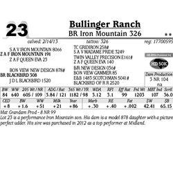 Lot 23 - BR Iron Mountain 326 - Bullinger Ranch