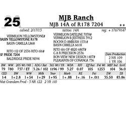 Lot 25 - MJB 14A of R178 7204 - MJB Ranch