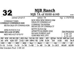 Lot 32 - MJB 7A of 0100 6140 - MJB Ranch
