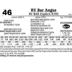 Lot 46 - RV BAR Explicit R395 - RV Bar Angus