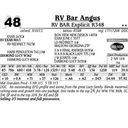 Lot 48 - RV BAR Explicit R348 - RV Bar Angus