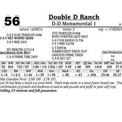 Lot 56 - D-D Monumental 1 - Double D Ranch