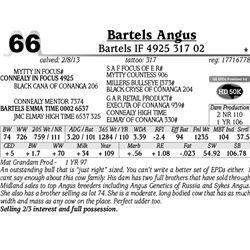 Lot 66 - Bartels IF 4925 317 02 - Bartels Angus