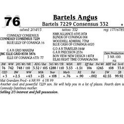 Lot 76 - Bartels 7229 Consensus 332 - Bartels Angus