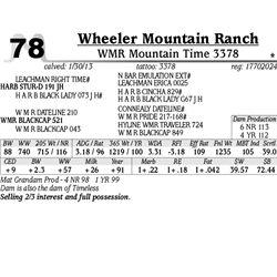 Lot 78 - WMR Mountain Time 3378 - Wheeler Mountain Ranch