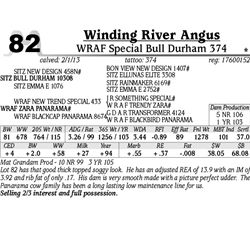 Lot 82 - WRAF Special Bull Durham 374 - Winding River Angus