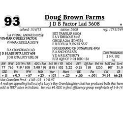 Lot 93 - J D B Factor Lad 3608 - Doug Brown Farms