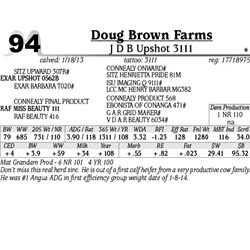 Lot 94 - J D B Upshot 3111 - Doug Brown Farms
