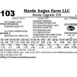 Lot 103 - Marda Upgrade 359 - Marda Angus Farm LLC