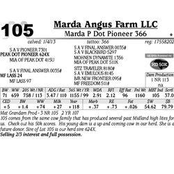 Lot 105 - Marda P Dot Pioneer 366 - Marda Angus Farm LLC
