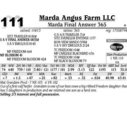 Lot 111 - Marda Final Answer 365 - Marda Angus Farm LLC