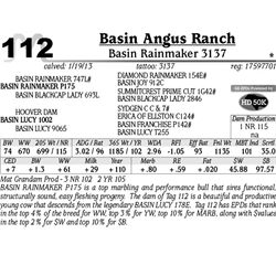 Lot 112 - Basin Rainmaker 3137 - Basin Angus Ranch