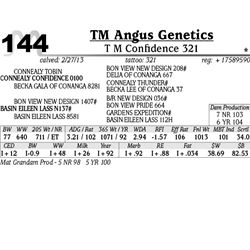 Lot 144 - T M Confidence 321 - TM Angus Genetics