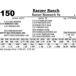 Lot 150 - Raezer Bismarck 9a - Raezer Ranch