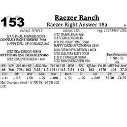 Lot 153 - Raezer Right Answer 18a - Raezer Ranch