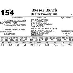 Lot 154 - Raezer Priority 30a - Raezer Ranch