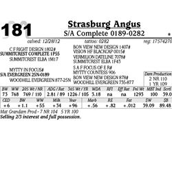 Lot 181 - S/A Complete 0189-0282 - Strasburg Angus