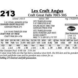 Lot 213 - Craft Great Falls 7003-305 - Les Craft Angus
