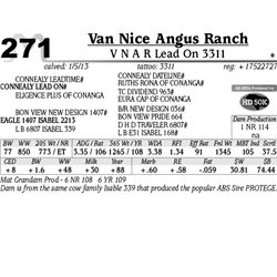 Lot 271 - V N A R Lead On 3311 - Van Nice Angus Ranch