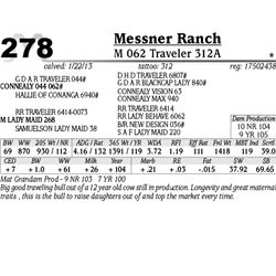 Lot 278 - M 062 Traveler 312A - Messner Ranch