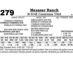 Lot 279 - M 014E Consensus 336A - Messner Ranch