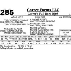 Lot 285 - Garret's Full Bore RJ03 - Garret Farms LLC