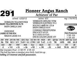 Lot 291 - Achiever of Par - Pioneer Angus Ranch
