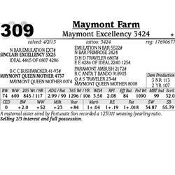 Lot 309 - Maymont Excellency 3424 - Maymont Farm