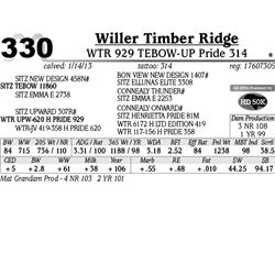 Lot 330 - WTR 929 TEBOW-UP Pride 314 - Willer Timber Ridge