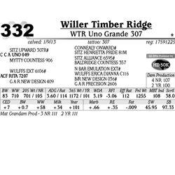 Lot 332 - WTR Uno Grande 307 - Willer Timber Ridge