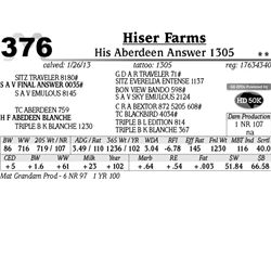 Lot 376 - His Aberdeen Answer 1305 - Hiser Farms