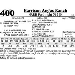 Lot 400 - HARB Forthright 363 JH - Harrison Angus Ranch