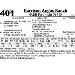 Lot 401 - HARB Forthright 367 JH - Harrison Angus Ranch