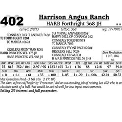 Lot 402 - HARB Forthright 368 JH - Harrison Angus Ranch