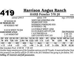 Lot 419 - HARB Prowler 370 JH - Harrison Angus Ranch