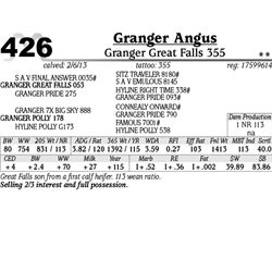 Lot 426 - Granger Great Falls 355 - Granger Angus