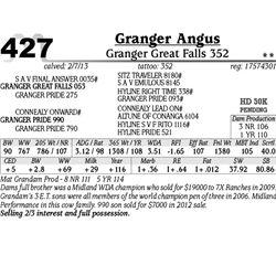 Lot 427 - Granger Great Falls 352 - Granger Angus