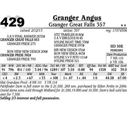 Lot 429 - Granger Great Falls 357 - Granger Angus