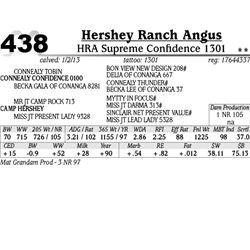 Lot 438 - HRA Supreme Confidence 1301 - Hershey Ranch Angus