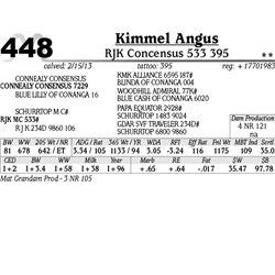 Lot 448 - RJK Concensus 533 395 - Kimmel Angus