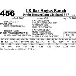 Lot 456 - Krein HooverDam Clochard 367 - LK Bar Angus Ranch