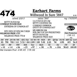 Lot 474 - Willwood In Sure 3847 - Earhart Farms
